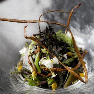 Superfood Seaweed at Aqua Kyoto
