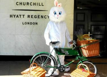Bunnyonabike