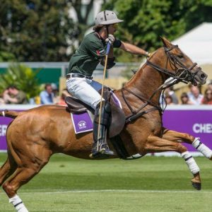 The Handbook's Ultimate Guide to Polo
