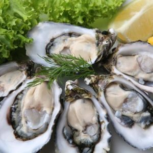 Cloudy Bay British Oyster Championship