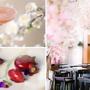 Dine Amongst Japanese Cherry Blossoms… in Mayfair