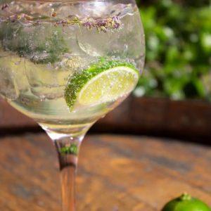 Camino Bankside Gin Garden