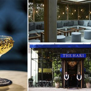 The Hari Bar Review: What We Thought