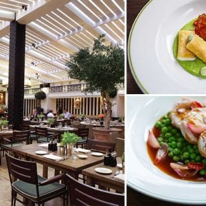 Novikov Italian Review: What We Thought