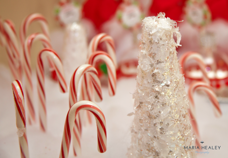 Enchanted Candy Cane Forest