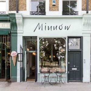 We Review Minnow