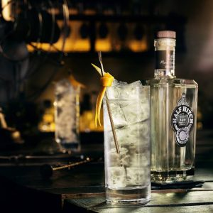 5 Gin Schools to Visit Now