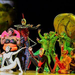 8 Unmissable Theatre Shows