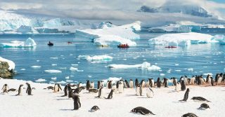 Actual Antarctica
