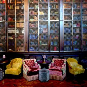 11 of the Cosiest Library Bars