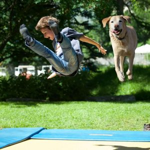 The World's First Dog Trampoline Park Is Coming to London