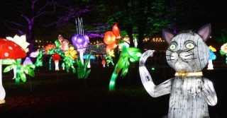 The Alice In Wonderland Lantern Festival