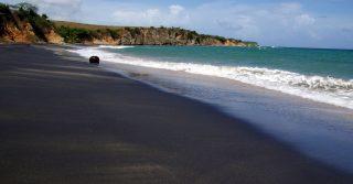 Playa Negra - Vieques, Puerto Rico