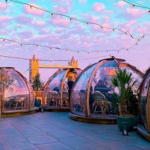 Surf's Up: The Incredible New Summer Igloos Launched Today