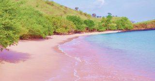 Pantai Merah, Komodo Islands, Indonesia