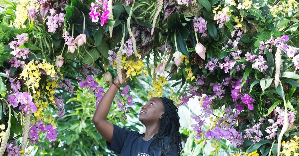 woman standing underneath archway of pink and purple flowers