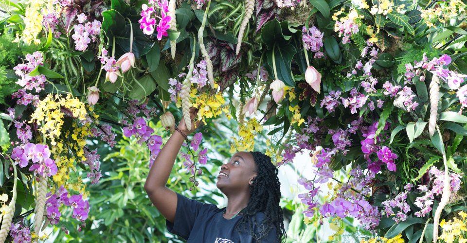 Kew Gardens launches new kids garden