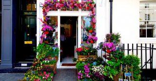 Belgravia's Blooming Marvelous Floral Displays