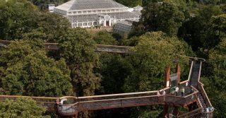 Kew Gardens Aerial Walkway