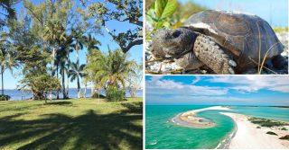 I Take On Florida's Paradise Beaches