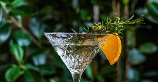 The Secret Gin Garden
