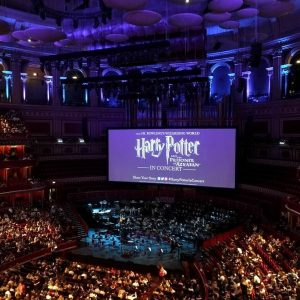 The Harry Potter Screening That'll Be Brooming Amazing