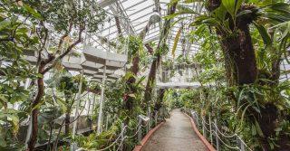 Botanic Garden Meise, Belgium