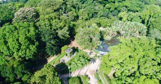 Jardim Botanico do Rio de Janeiro, Brazil