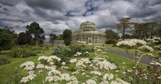 National Botanic Gardens, Ireland