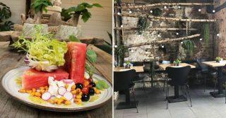 W6 Garden Centre & Cafe