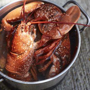 Fish'n'Fizz, The London Vineyard Opening A Restaurant