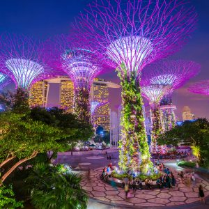 Once and Flor-al, The World's Most Instagrammable Botanical Gardens