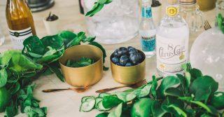 Gin Festival Ginbop
