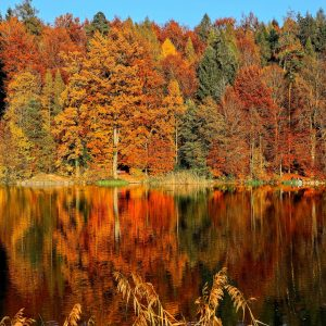 Fall In Love With The World's Most Instagrammable Autumnal Locations