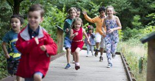 The Interactive Children's Garden