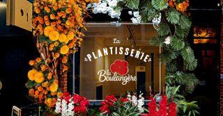 La Plantisserie Pop-Up