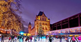 The Ice Rink at Natural History Museum