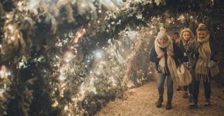 The Winter Night Garden & Backyard Cinema