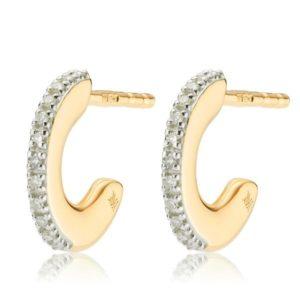 Fiji Small Skinny Hoop Diamond Earrings